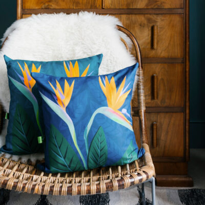 Bird of Paradise Flower cushion