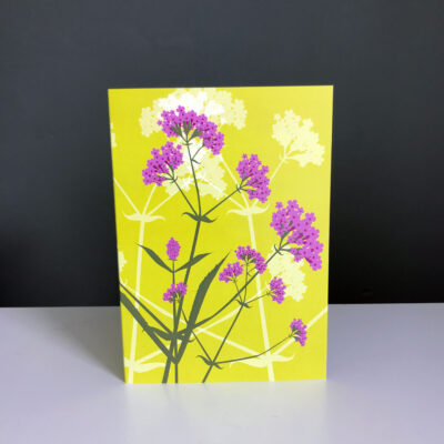 Verbena bonariensis Greeting Card