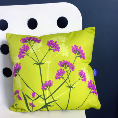 Verbena bonariensis cushion